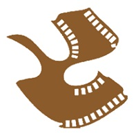 Satyajit Ray Film & Television Institute (SRFTI)